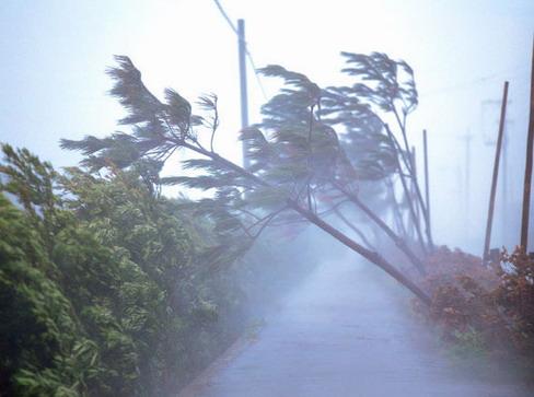Un Typhon au Japon